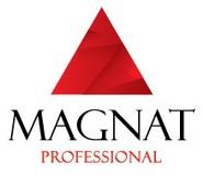 Логотип (торговая марка) Коммуникационное агентство Magnat Professional