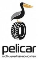 Логотип (торговая марка) ООО МастерШин