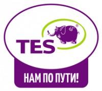 Логотип (торговая марка) ОООТОРГОВЫЙ ДОМ «ТЭС»