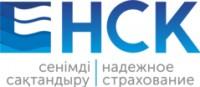 Логотип (торговая марка) АОНефтяная страховая компания