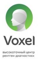 Логотип (торговая марка) VOXEL