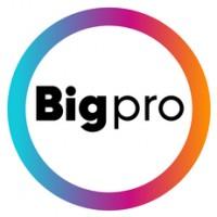 Логотип (торговая марка) BigPro