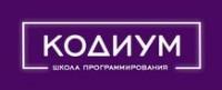 Логотип (торговая марка) IT-школа Кодиум