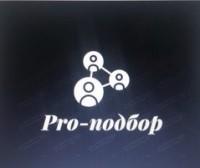 Логотип (торговая марка) Pro-подбор