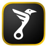 Логотип (торговая марка) VORON – Каршеринг бизнес-класса в стиле личного авто