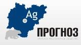 Логотип (торговая марка) АО Прогноз