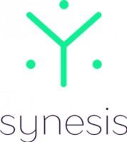 Логотип (торговая марка) Синезис