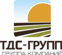 Логотип (торговая марка) ТДС-Групп