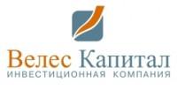 Логотип (торговая марка) Велес Капитал, ИК