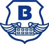 Логотип (торговая марка) Бринкс