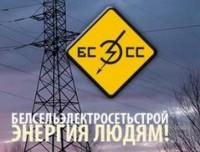 Логотип (торговая марка) ОАО Белсельэлектросетьстрой