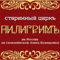 Логотип (торговая марка) Цирк Танцующих Фонтанов Аквамарин